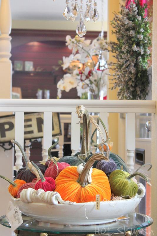 R_blooms_hot_skwash_velvet_pumpkins_img_6110