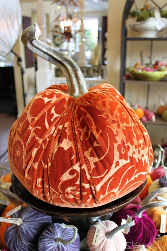 R_blooms_hot_skwash_velvet_pumpkins_img_6225